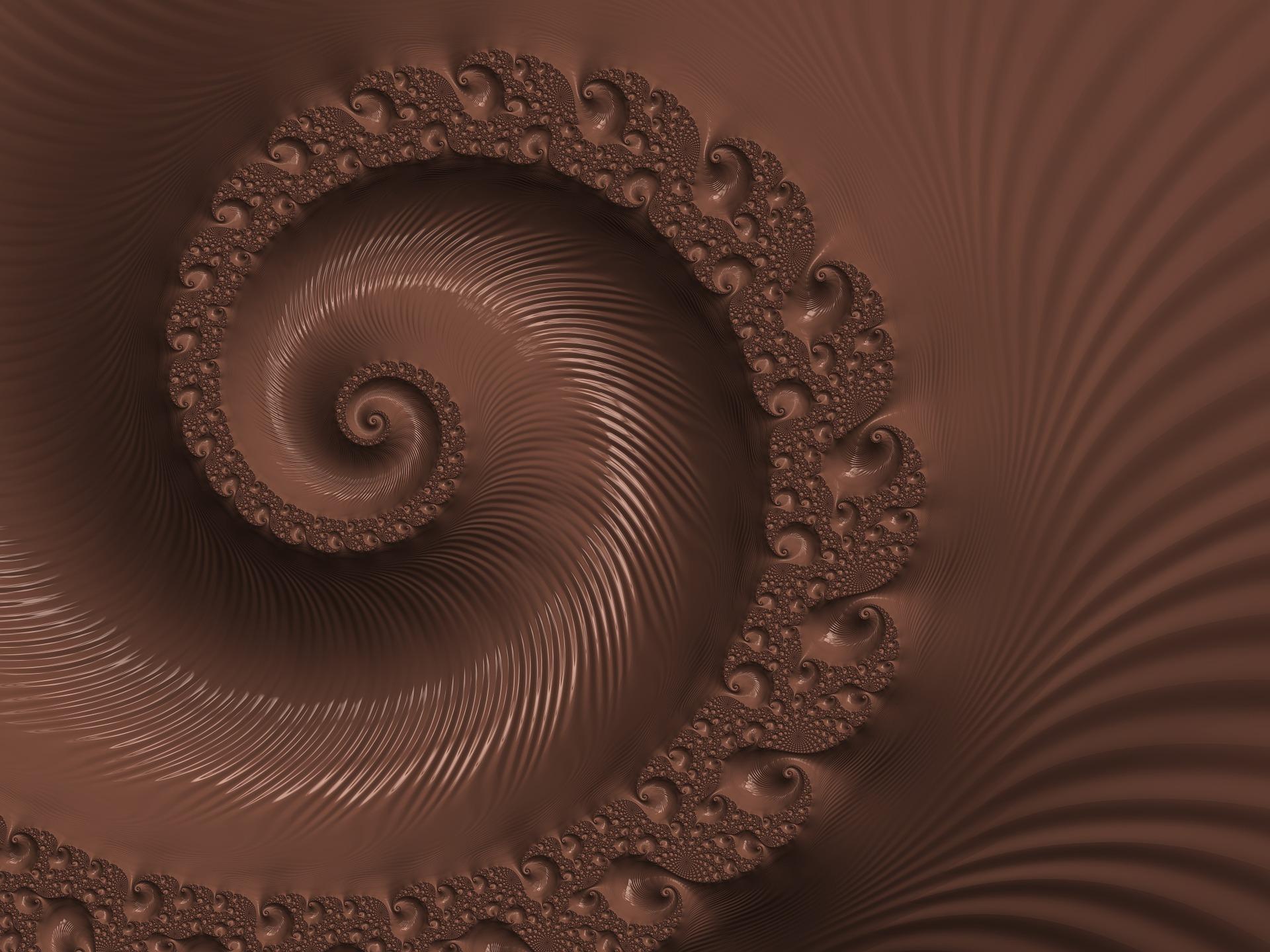 שוקולד קונכייה